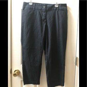 Loft outlet ladies curvy crop pants